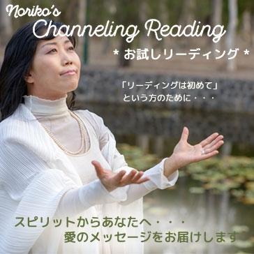 Noriko's チャネリング・リーディング【お試し版】