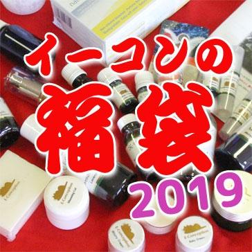 イーコンの福袋2019 予約販売開始!
