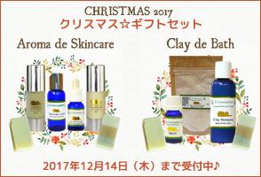 クリスマス☆ギフトセット 2017
