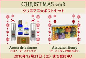 クリスマス☆ギフトセット 2018